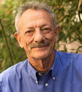 Alberto Minujin